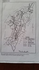 Map of Adamawa pastoral routes.